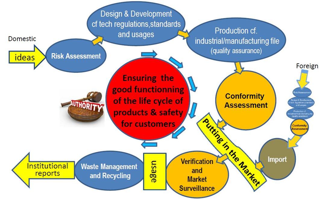 risk based regulatory chain